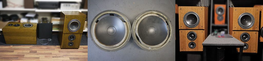 Dynaudio MSP 300 Boxen mit defekten 21W54 (Sicken)